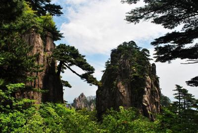 Mount Huangshan in Summer
