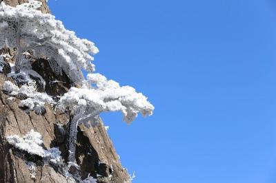 Rime in Mount Huangshan